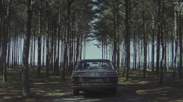 car www