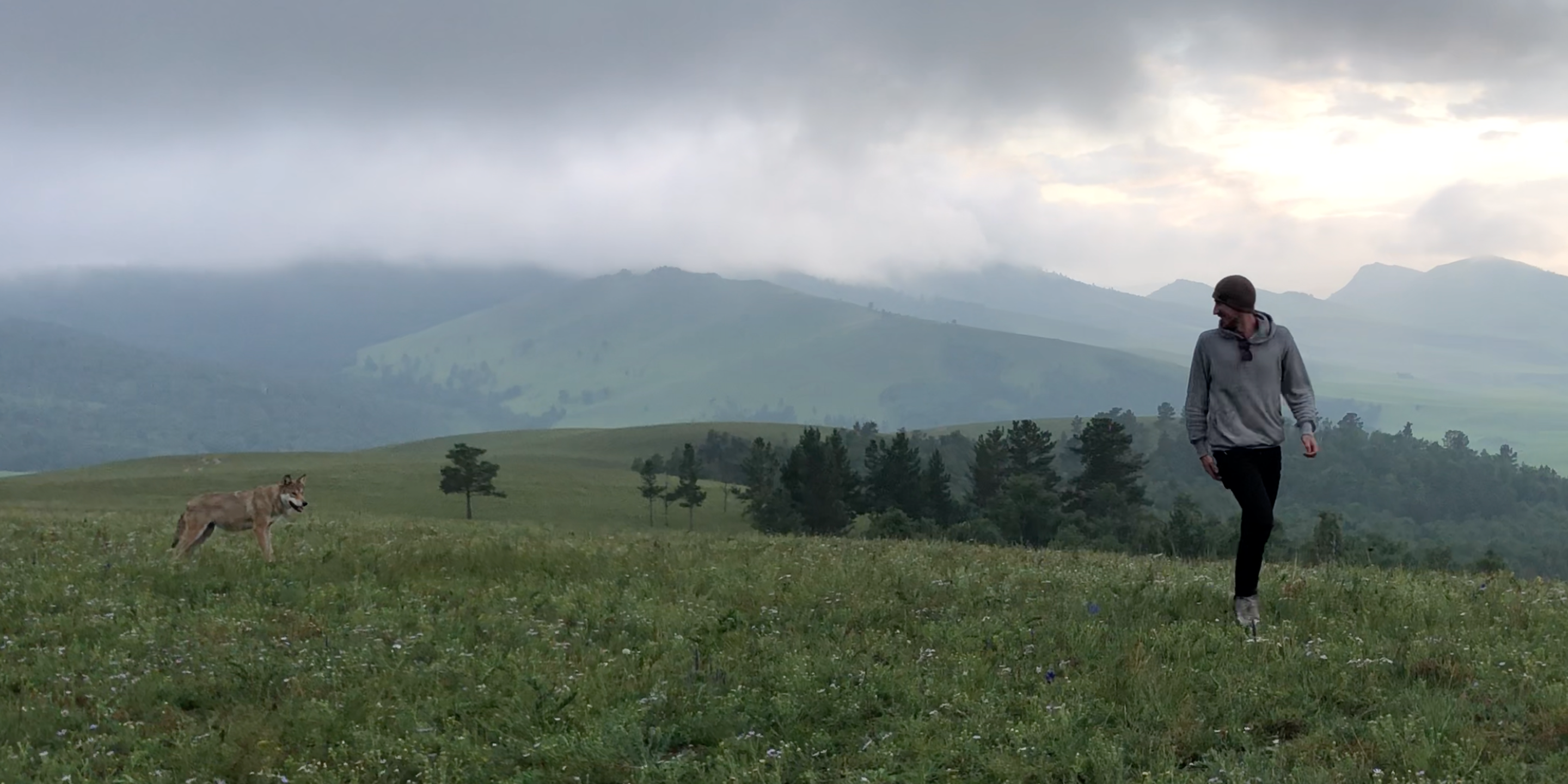 Exploring Mongolia with Rory Cavanagh