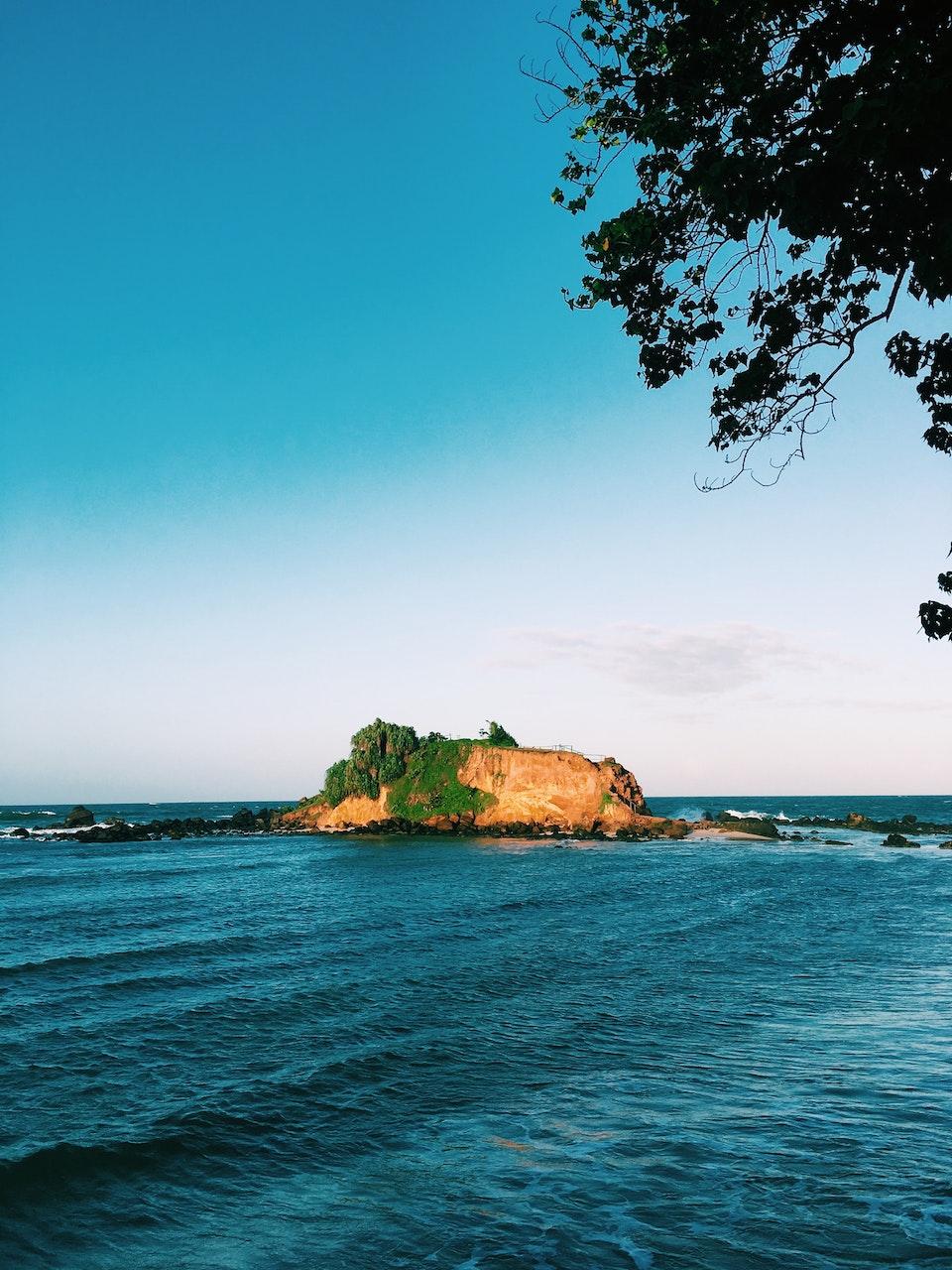 electriclimefilms - Nikon 'Ceylon'