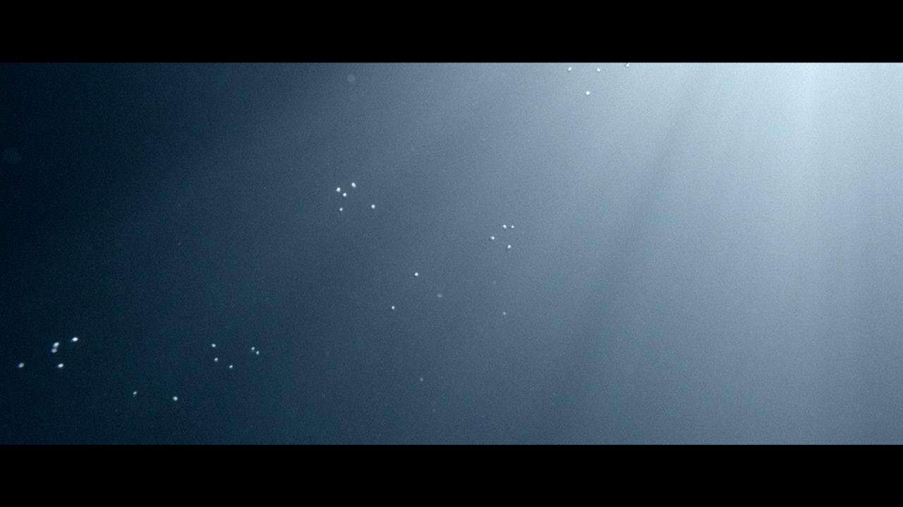 Rosie Lowe | Water Came Down -