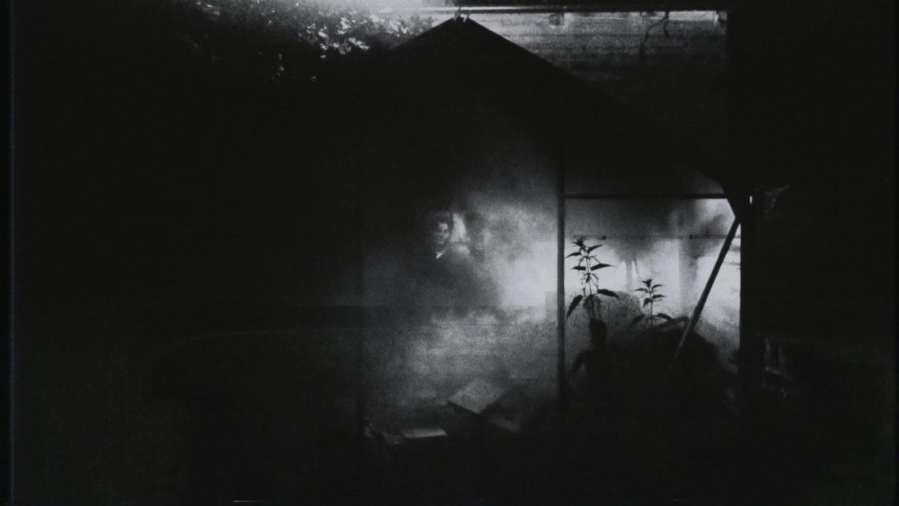 DAVE OKUMU | OCEANS OF PURPLE -