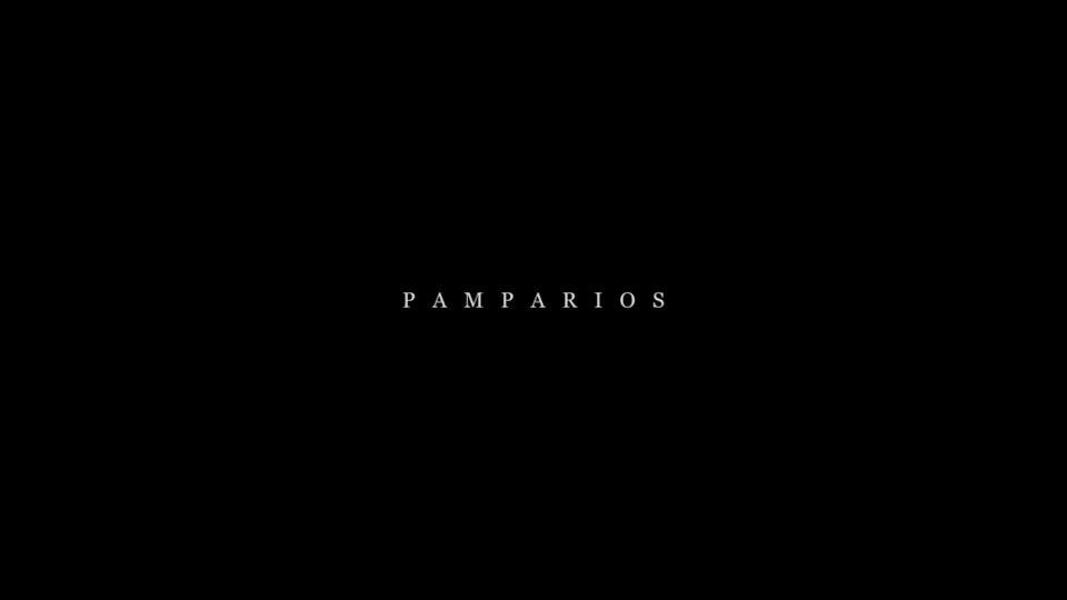 Pamparios