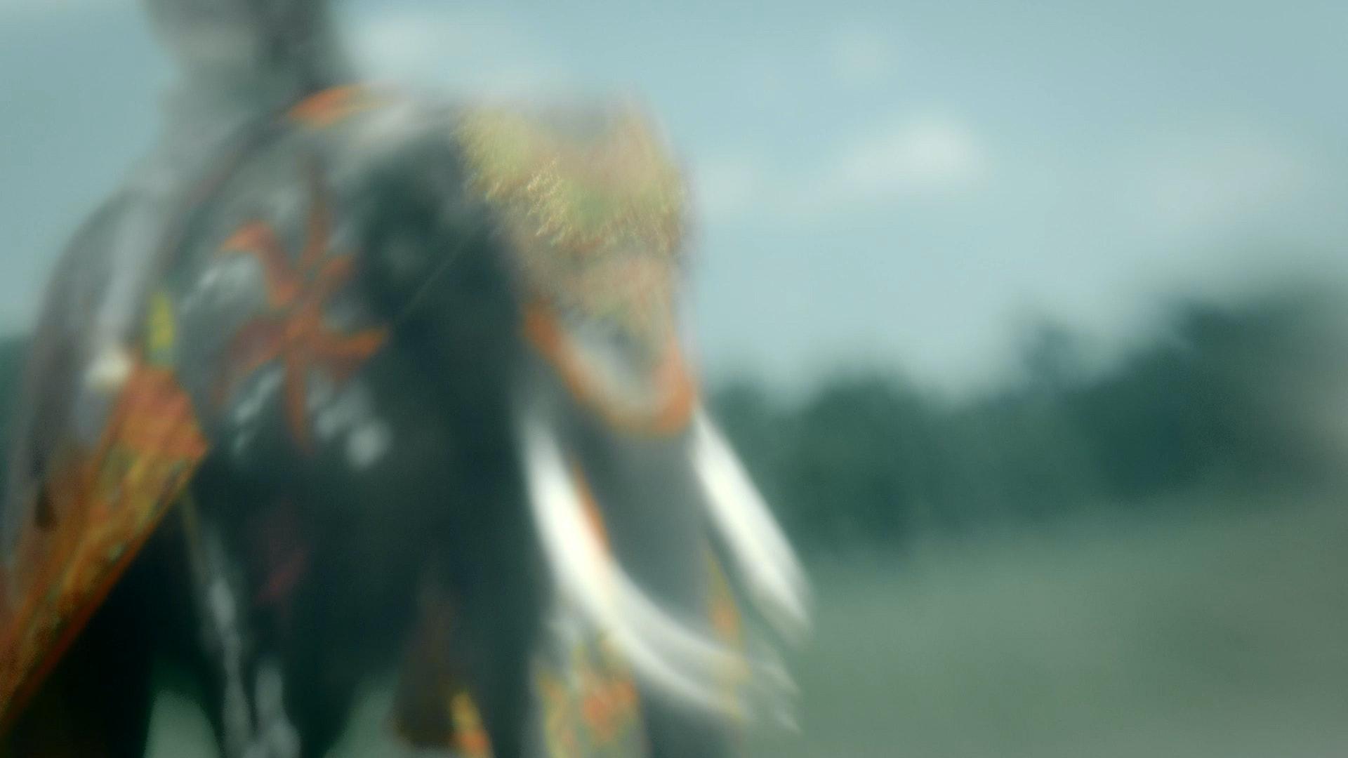 Sequence 01.Still019