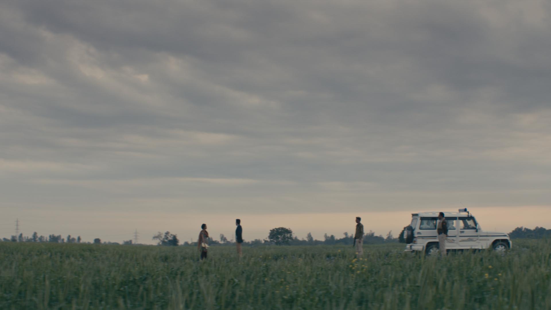 Fields 001
