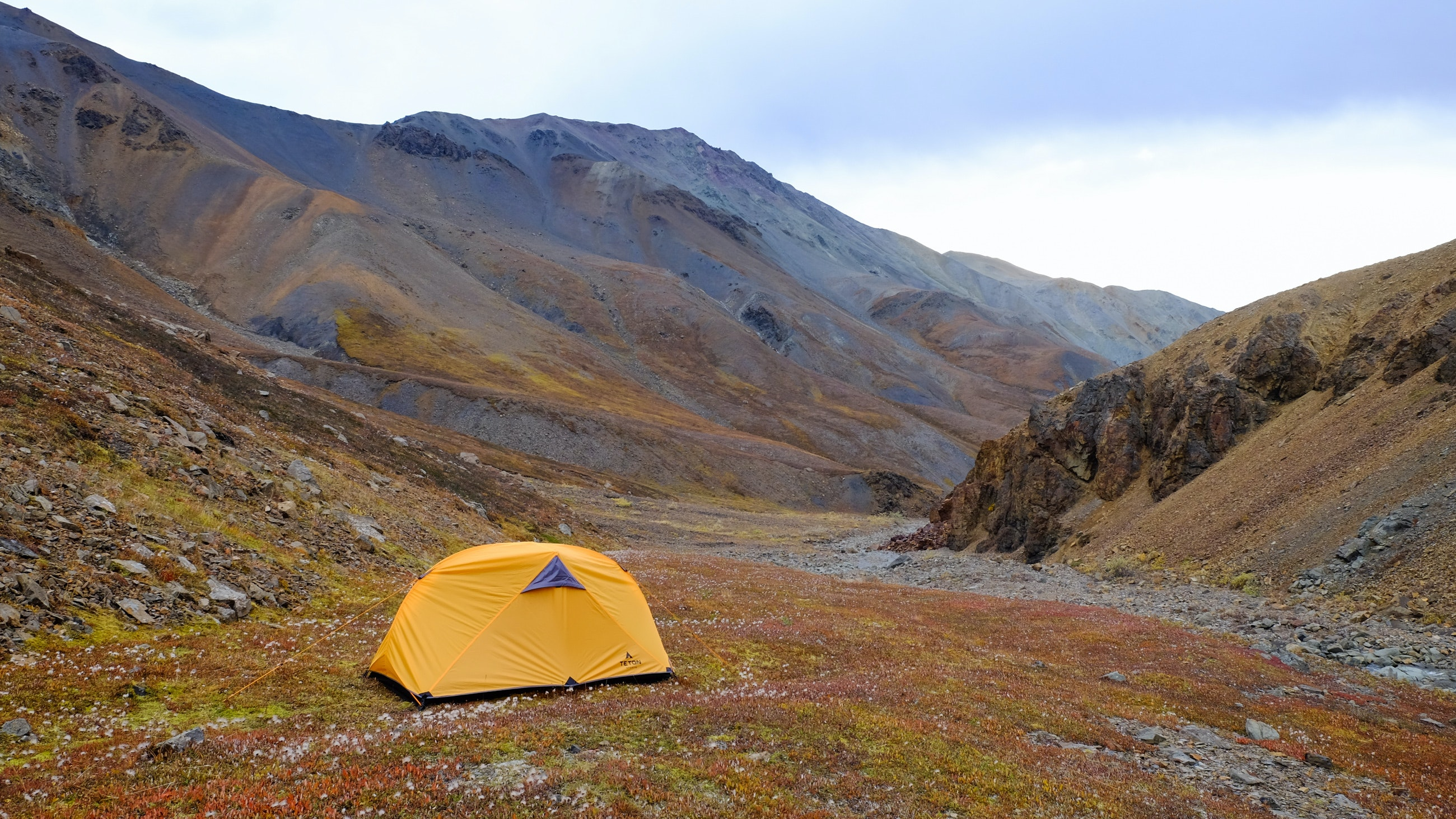 Camp Night 2 - Denali National Park