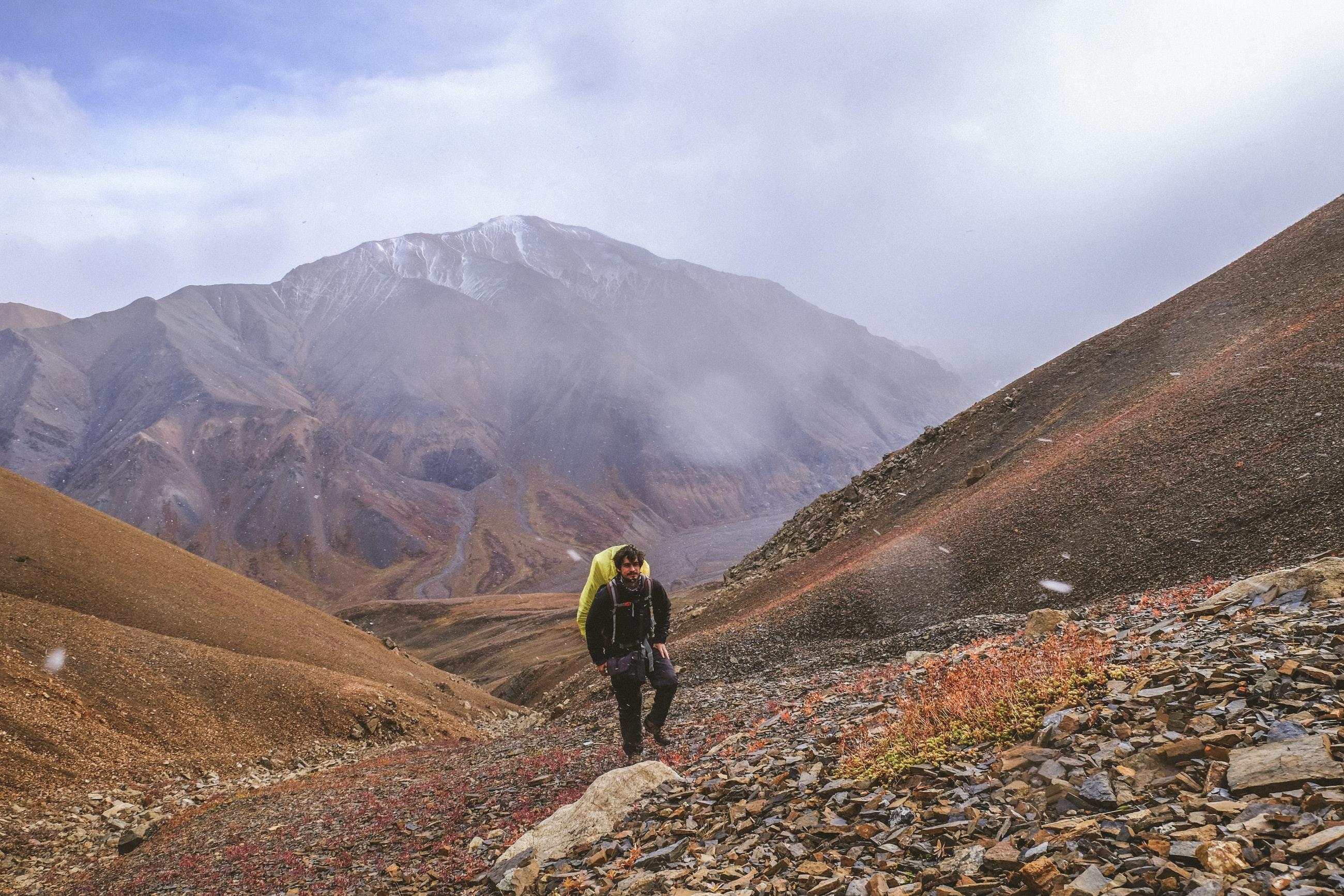 Looking back - Denali National Park