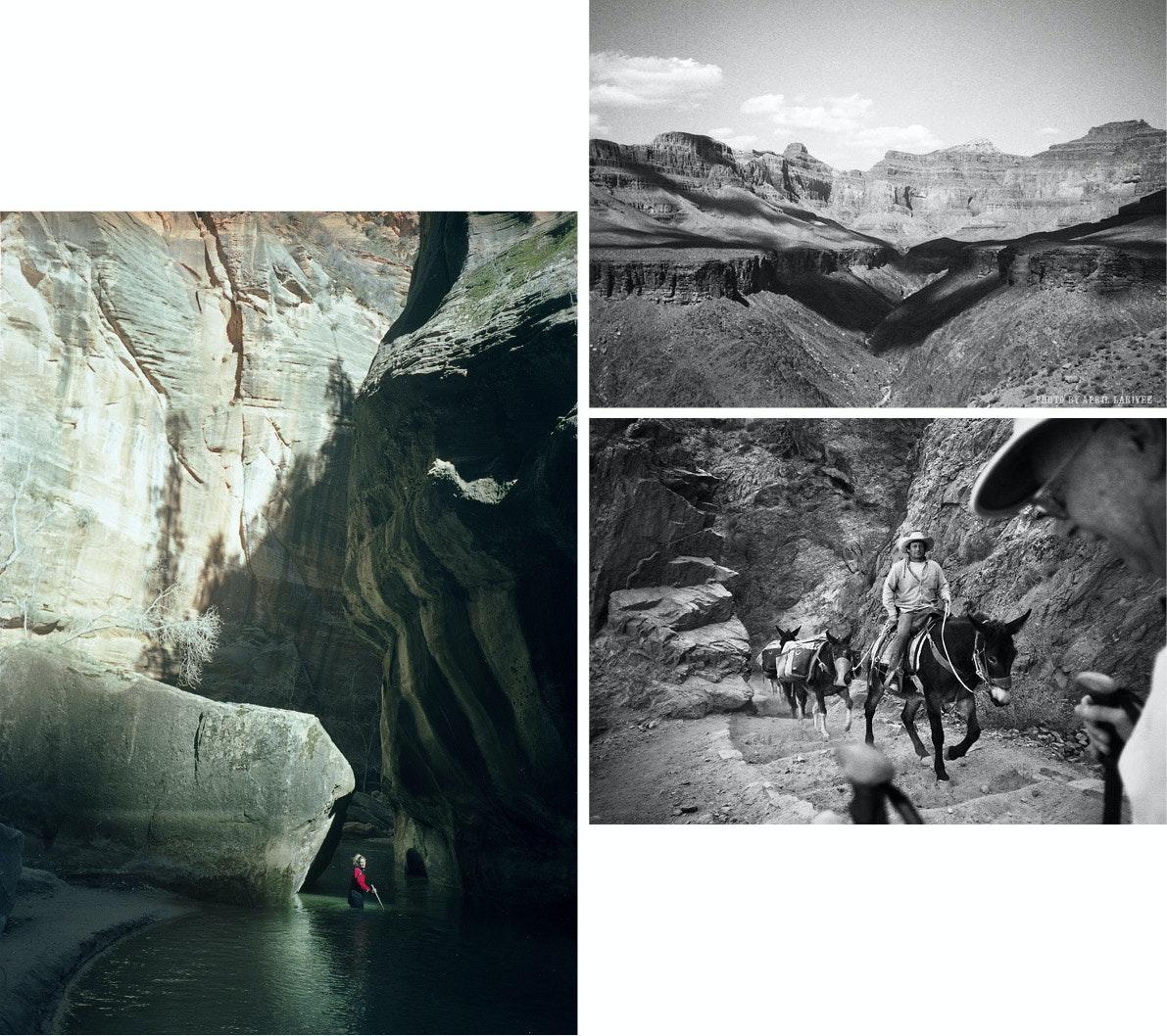 April Larivee - VLXL_Larivee_Luepke_Desert11