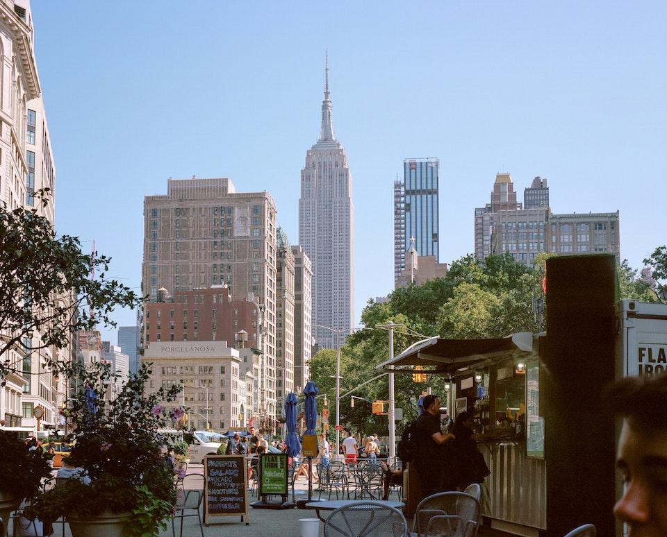 DOG DAYS, NEW YORK CITY 65150009