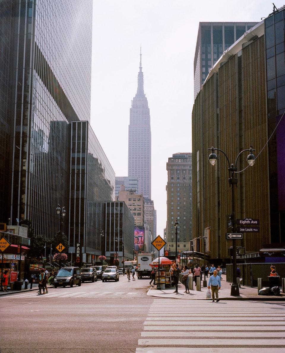 DOG DAYS, NEW YORK CITY 65160005