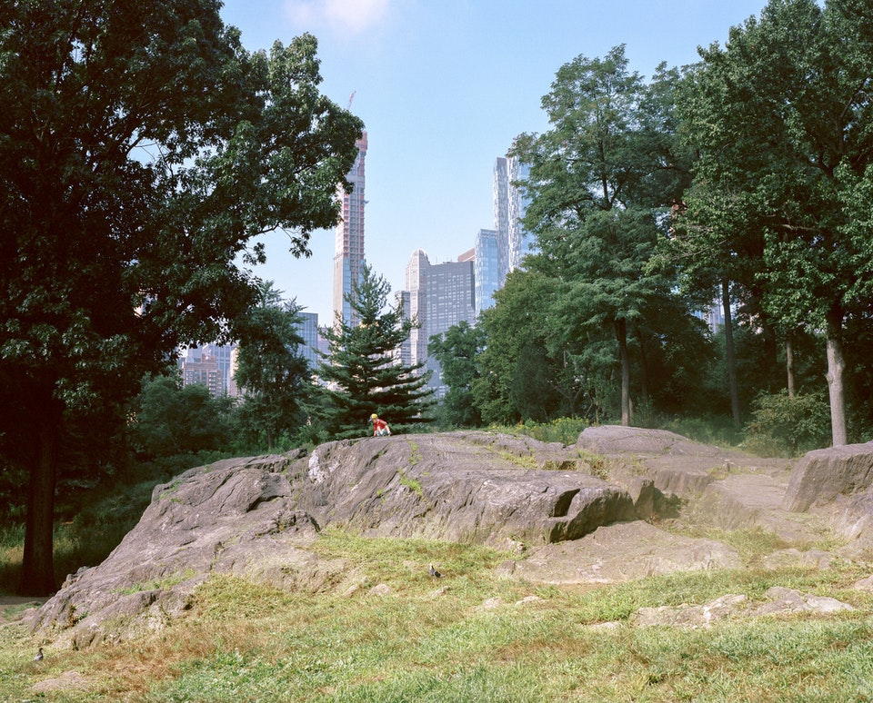 DOG DAYS, NEW YORK CITY 65200009