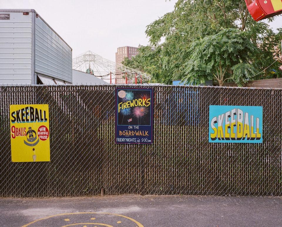 DOG DAYS, NEW YORK CITY 65290008