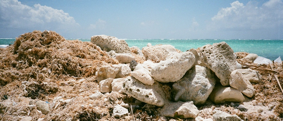 PHOTOGRAPHY - LAND AND SEA -