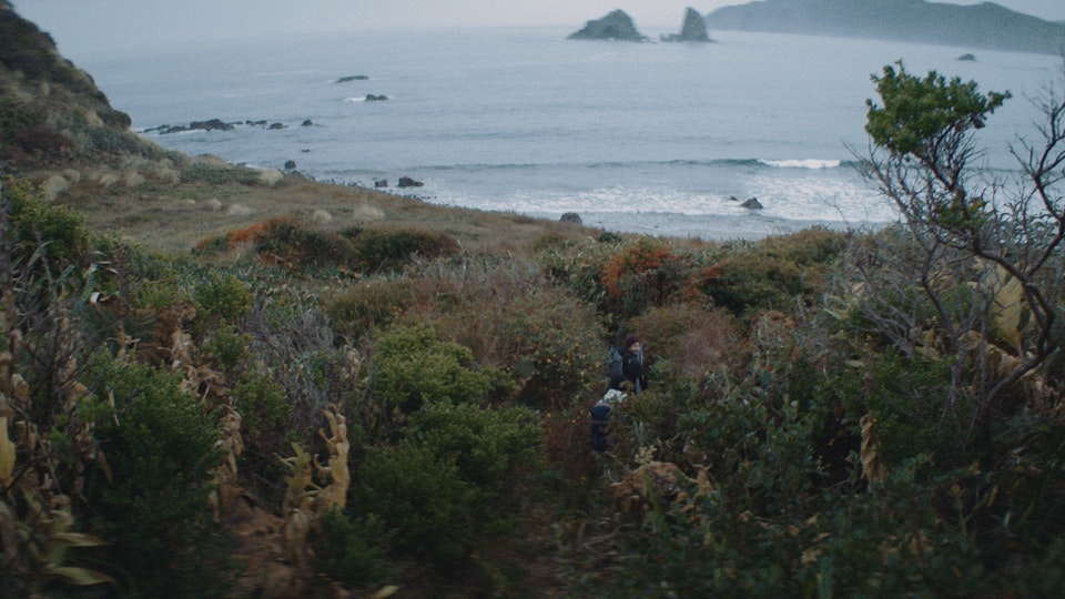 Sperry | The Southern Seas -