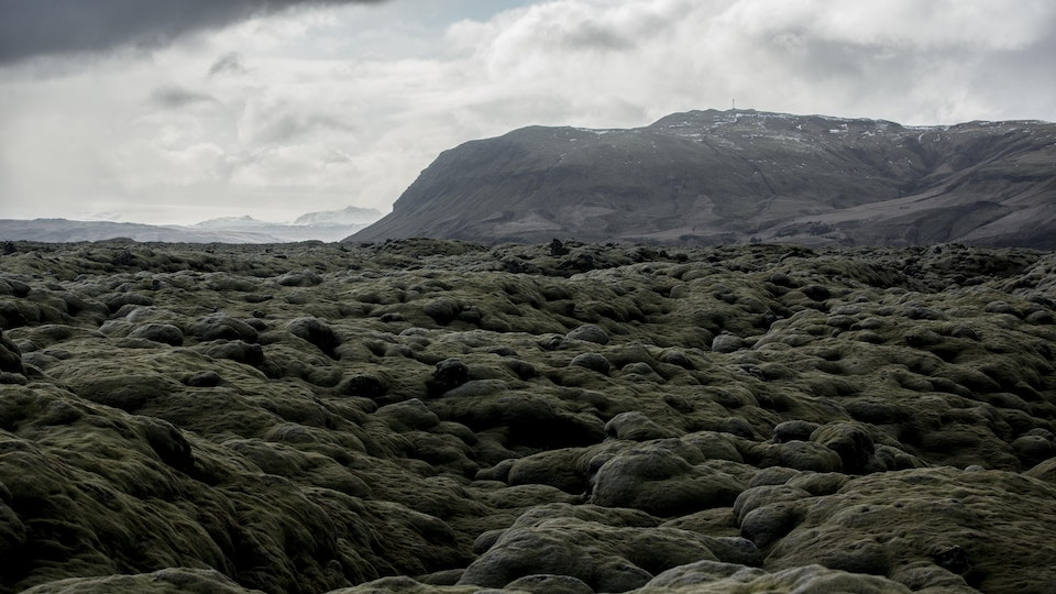 Skyscanner | Iceland 2X5A9528