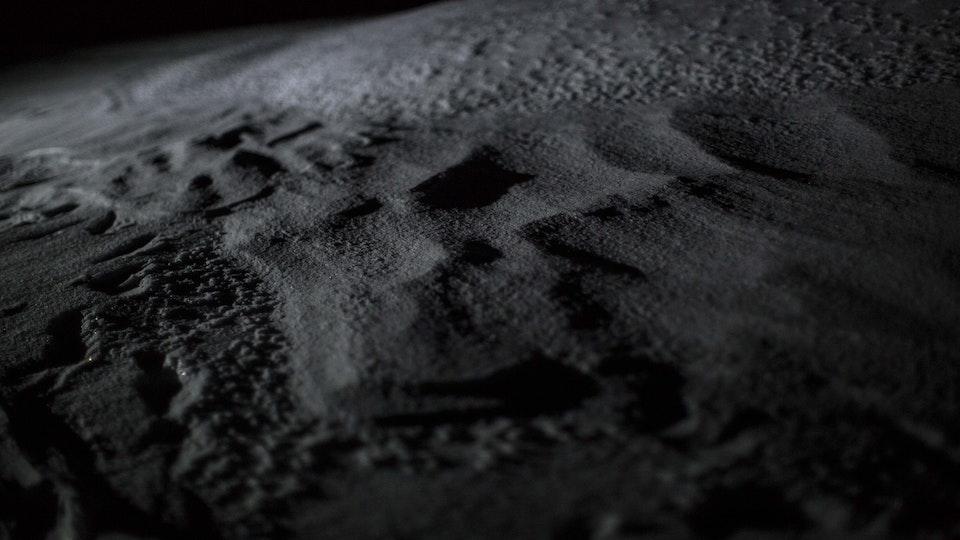 Lunar 2X5A8916