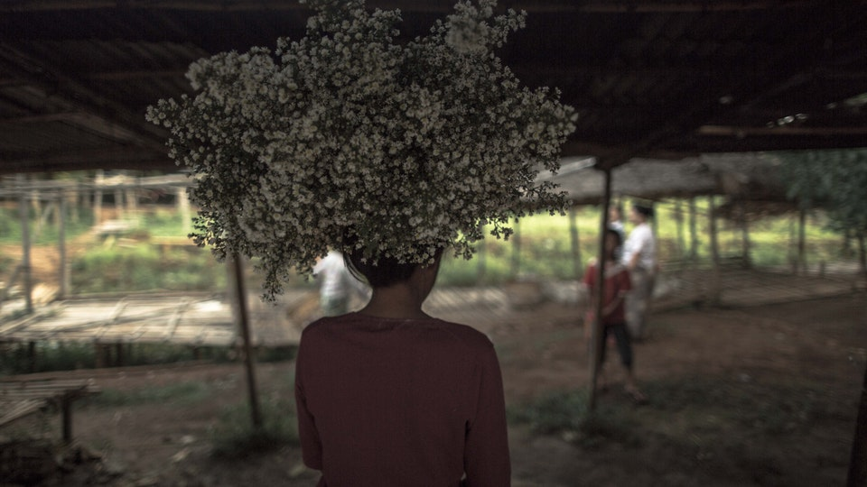Skyscanner | Myanmar 1K7A0900