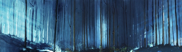 05_a_Forest_loop_v019+(00000)
