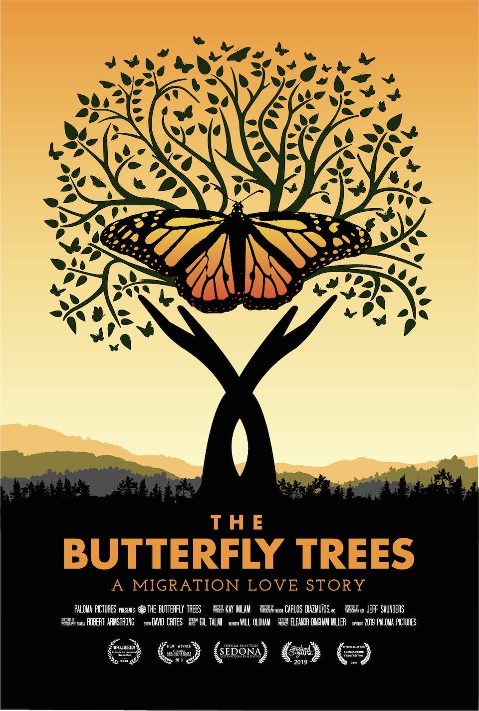 The Butterfly Trees / El Árbol de Mariposas -