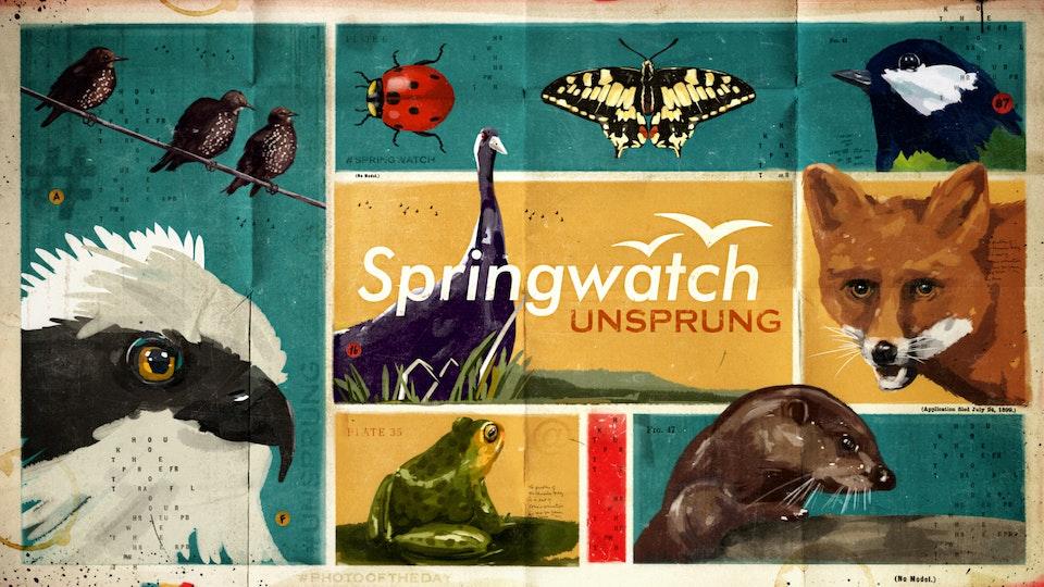 Springwatch Unsprung