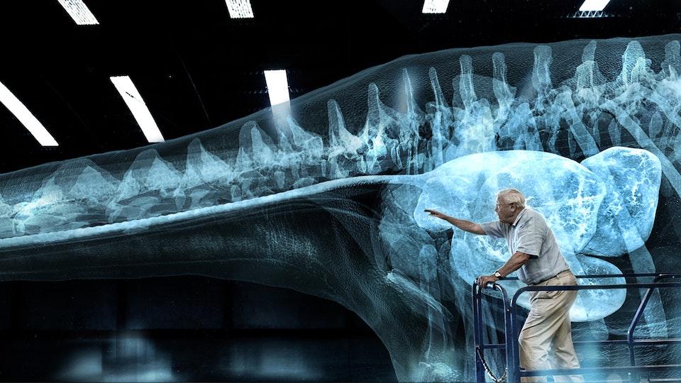 Attenborough & the Giant Dinosaur
