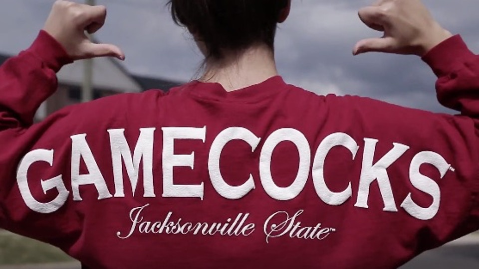 Gamecock Licensing