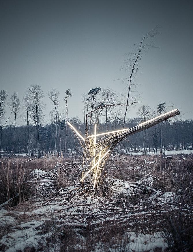 Sebastian Wanke, Neon, Wald