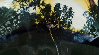 Waldsamkeit