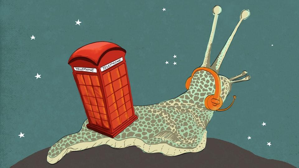Snail Services