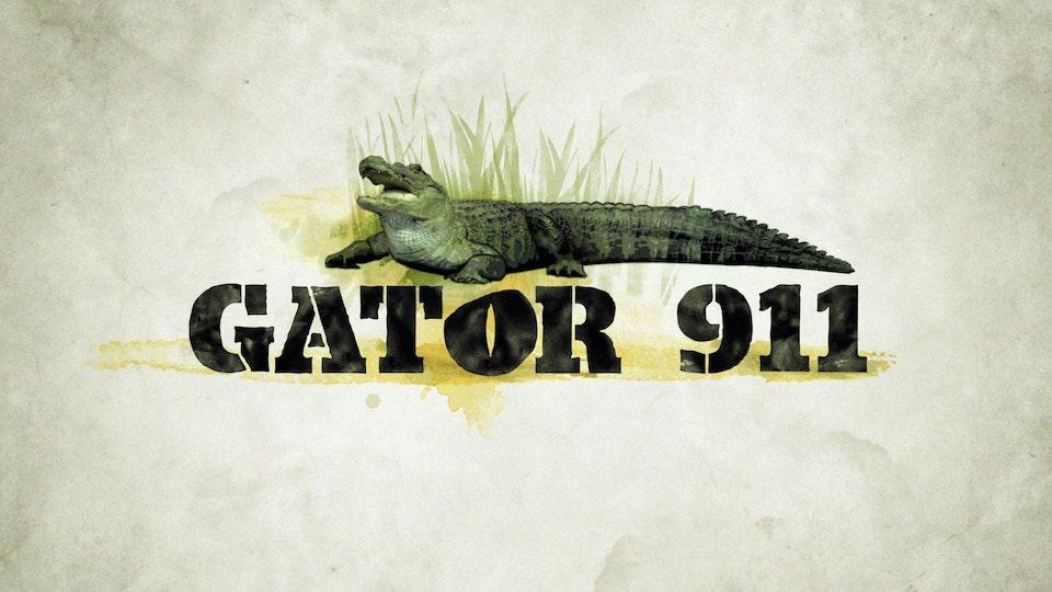 CMT's Gator 911