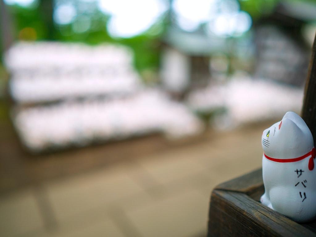 Gotokuji 豪徳寺