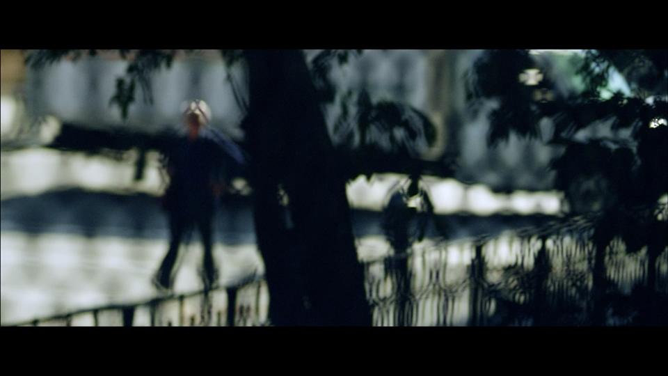 SONY - Steve McCurry - Screen Shot 2017-05-11 at 11.44.58 PM