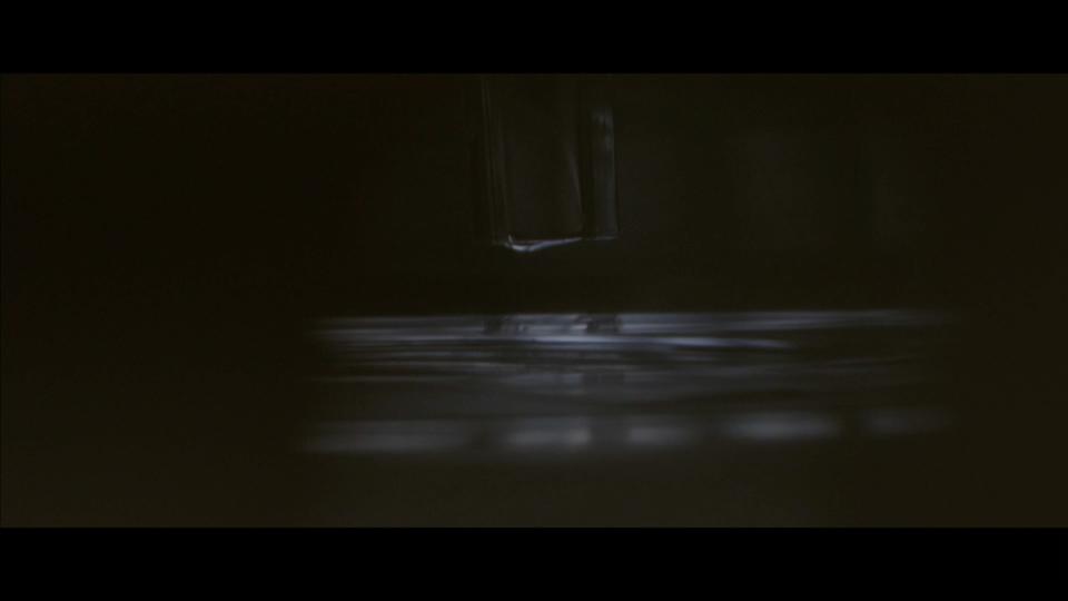 BELLA FREUD & AZZI GLASSER - Le parfume de ma vie - Screen Shot 2017-11-20 at 12.33.32 AM