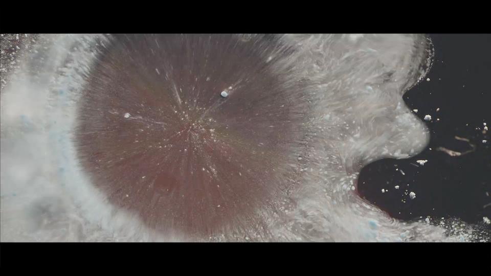 BELLA FREUD & AZZI GLASSER - Le parfume de ma vie - Screen Shot 2017-11-20 at 12.31.16 AM