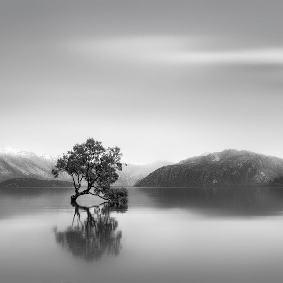 Landscape Grace