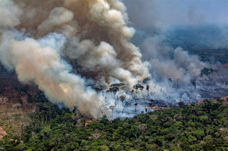BRAZILIAN WILDFIRES: Holding UK Supermarkets To Account