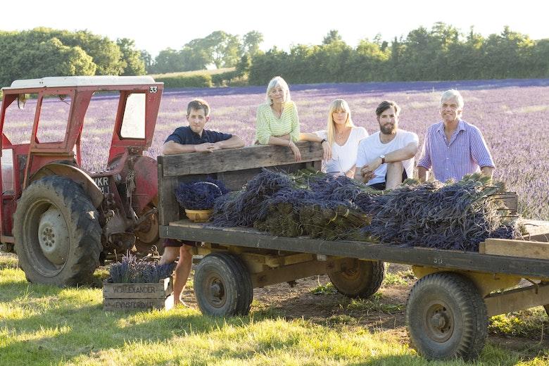 kent_lavender_farm-2076