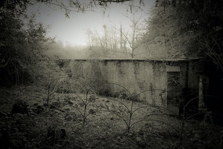 hadspen_house-213
