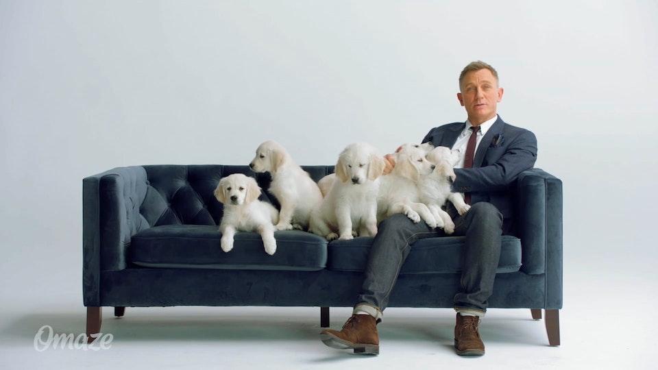 Omaze/Puppies