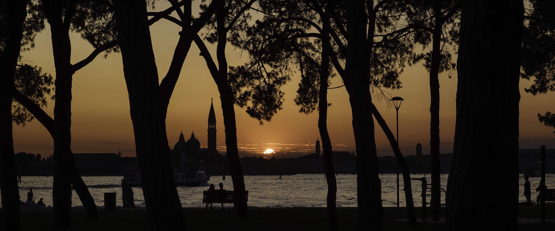 Diamond Bullet - Venice sunset