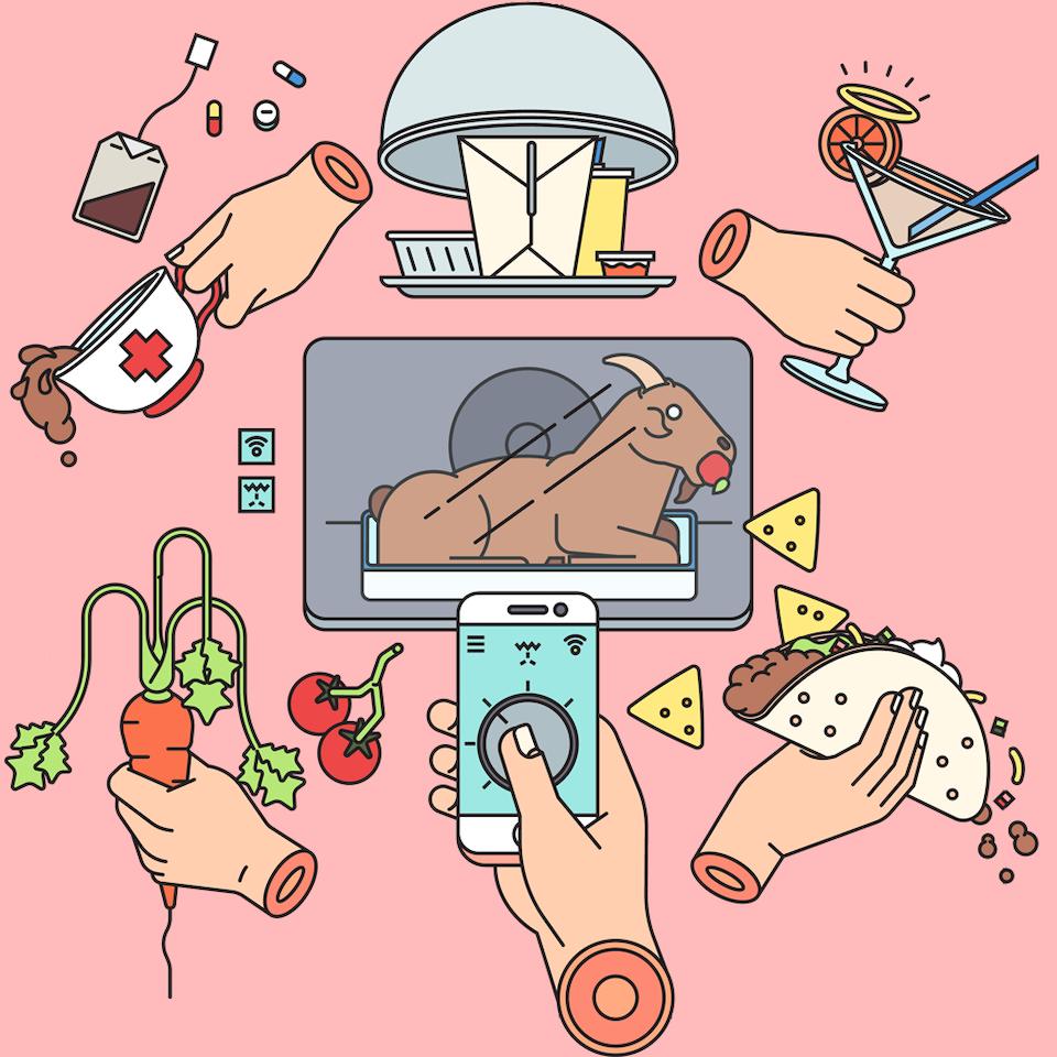 BloodBros. illustration - 2017 Food Trends