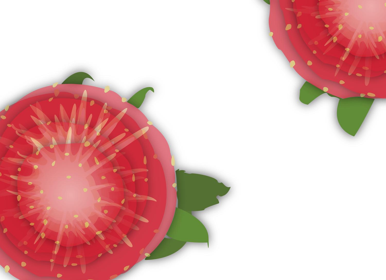 strawberries-06