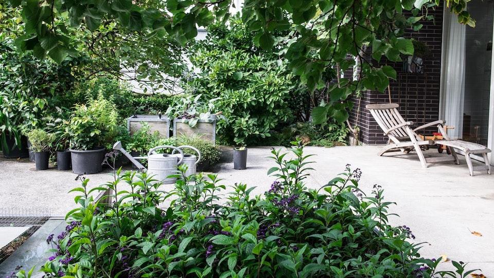 Landskap Garten