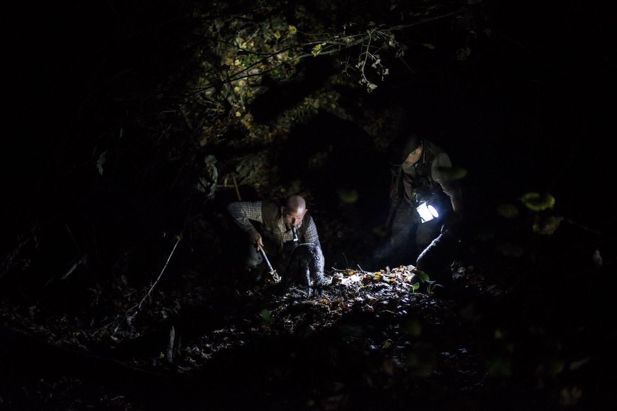 «Die Königin der Nacht» published on NZZ