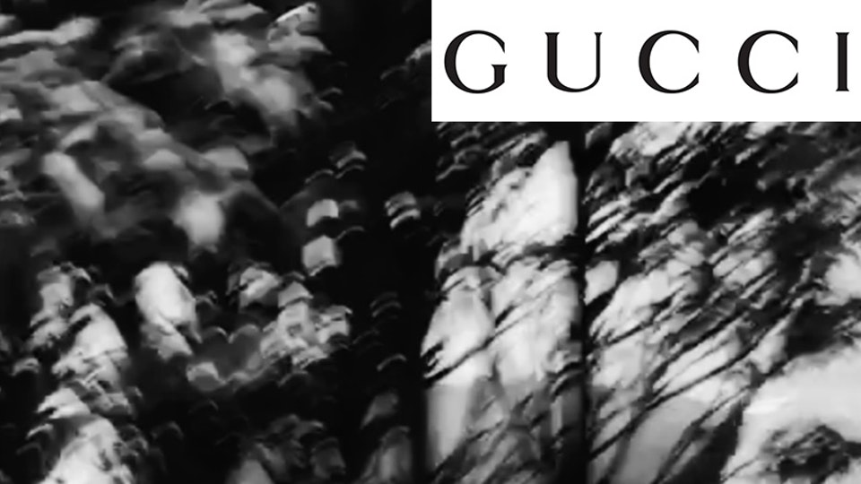 | GUCCI | Dover Street Market Exclusive