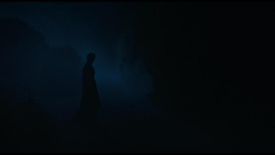 """""""Death & Nightingales"""" - c105fa7e8d5048ea"""