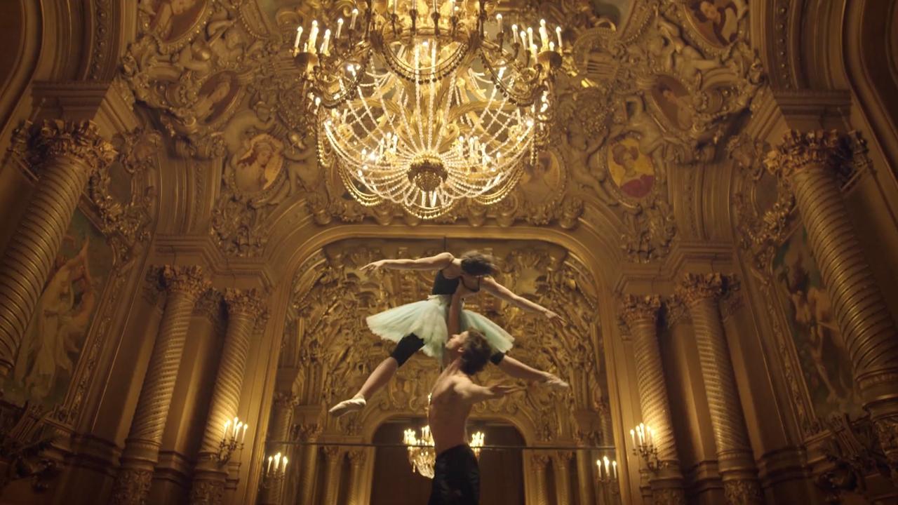 opera national de paris - skin