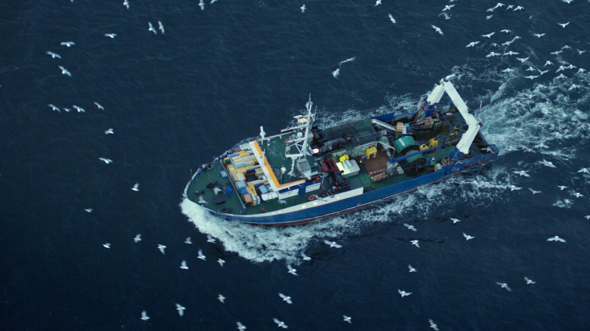 huawei - fisherman