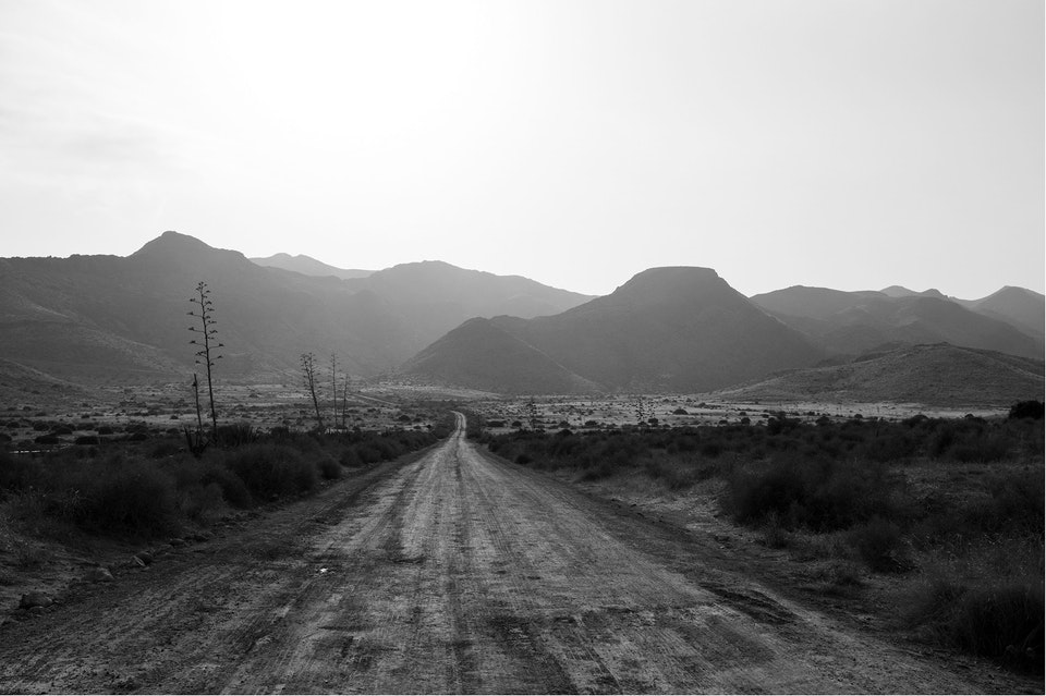 Landscapes - de983f73babba201