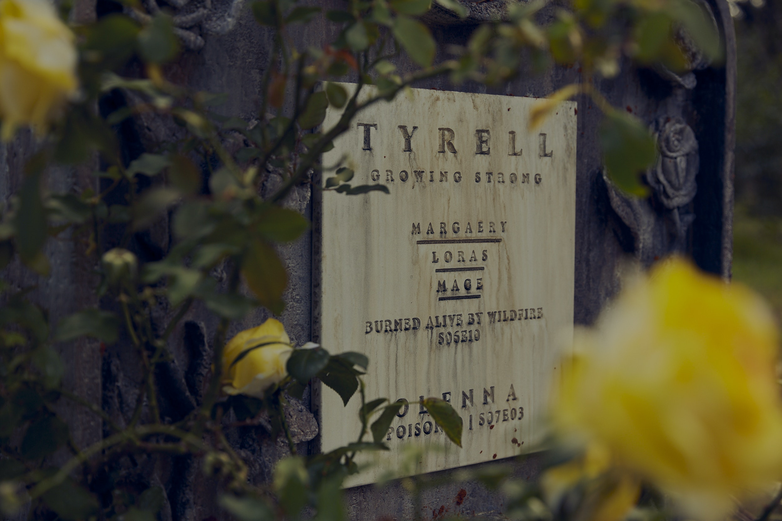 ENZO. PREVIS ARTIST. PRODUCTION DESIGNER. - House Tyrell Detail
