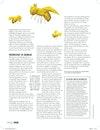 ELLE Netherlands - Editorial